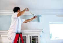 painter in Gurgaon